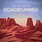 Roadrunner by David Seyer