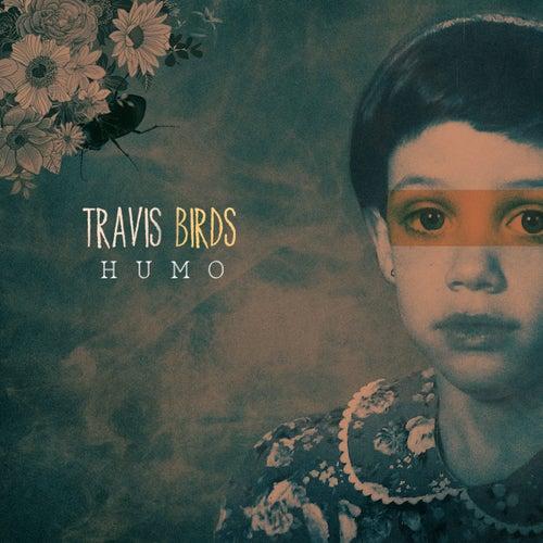 Humo (Acústico) de Travis Birds