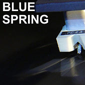 Blue Spring by Various Artists