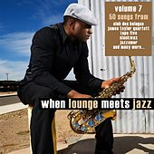 When Lounge Meets Jazz, Vol. 7 von Various Artists