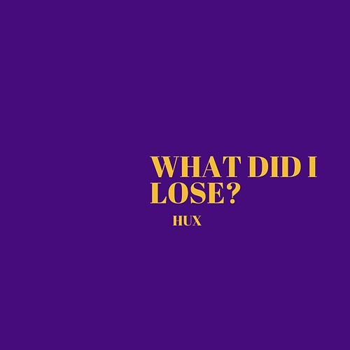 What Did I Lose? by Hux Edwards
