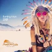 Burning Man 2018 von Various
