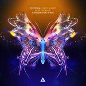 Love U Right (Remixes, Pt. 2) de Tritonal