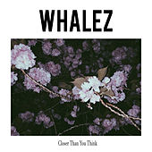 Closer Than You Think by Whalez