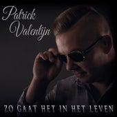 Zo Gaat het In Het leven by Patrick Valentijn