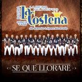 Se Que Llorare by Banda La Costeña