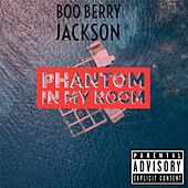 Phantom in My Room by Boo Berry Jackson