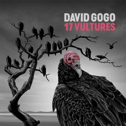 17 Vultures de David Gogo