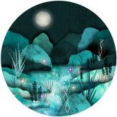 Lyra by Koloto