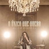 O Único Que Quero (Lo Único Que Quiero) by Olivia Ferreira