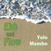 Ebb and Flow de Yolo Mambo