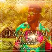 De l'or de H Magnum