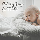 Calming Songs for Toddler de White Noise Babies