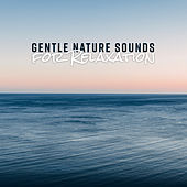 Gentle Nature Sounds for Relaxation by Nature Sounds Relaxation: Music for Sleep, Meditation, Massage Therapy, Spa