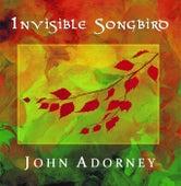 Invisible Songbird de John Adorney
