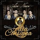 Así Nací by Alta Consigna