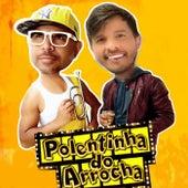 Playlist Paredão by Polentinha do Arrocha