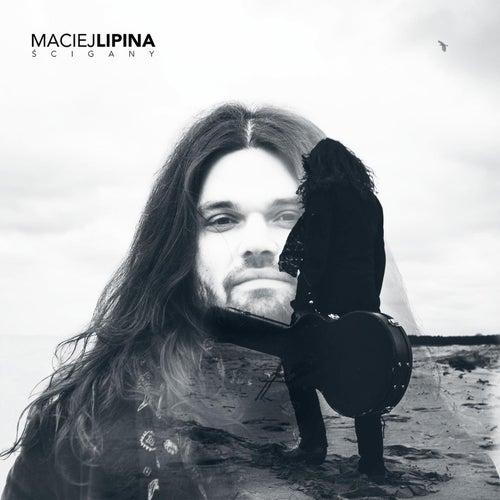 Ścigany by Maciej Lipina