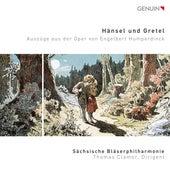 Humperdinck: Hänsel und Gretel (Excerpts Arr. S. Goldhammer) by Various Artists