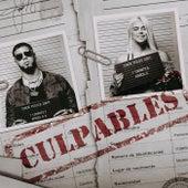 Culpables van Anuel Aa & Karol G