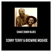 Shake Down Blues by Sonny Terry