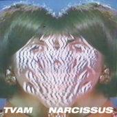 Narcissus de Tvam