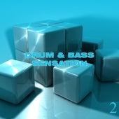 Drum & Bass Sensation, Vol. 2 by Various Artists
