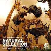 Natural Selection - Album Sampler Pt 1 by Various Artists