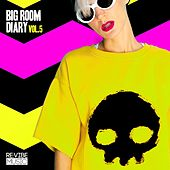 Big Room Diary, Vol. 5 by Various Artists