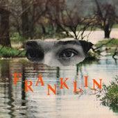 Fiction von Franklin