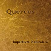 Imperfecta Naturaleza by Quercus