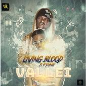 Vallei by Wakz1