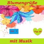Top 20: Blumengrüße mit Musik, Vol. 1 by Various Artists