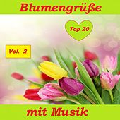 Top 20: Blumengrüße mit Musik, Vol. 2 van Various Artists