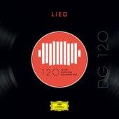DG 120 – Lied von Various Artists