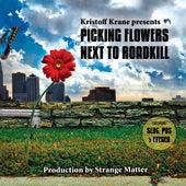 Picking Flowers Next To Roadkill by Kristoff Krane