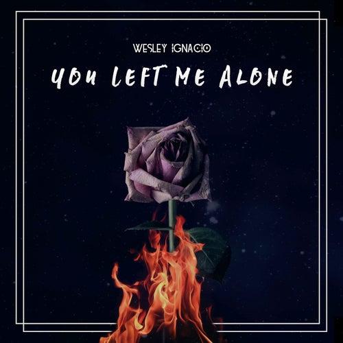 You Left Me Alone by Wesley Ignacio