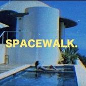 Valhalla de Spacewalk