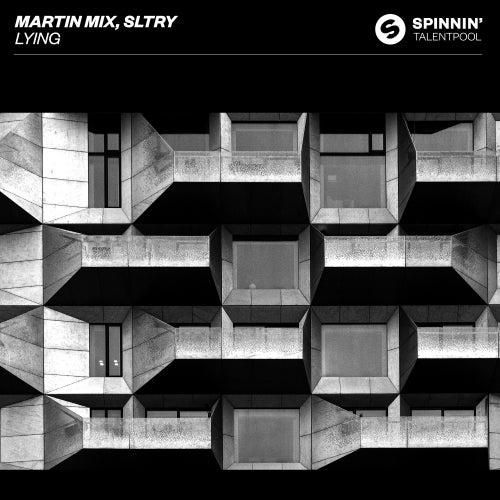 Lying von Martin Mix