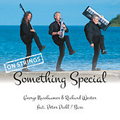 Something Special - On Strings by George Nussbaumer