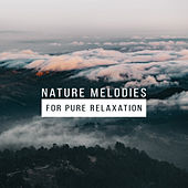 Nature Melodies for Pure Relaxation de Sounds Of Nature