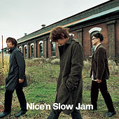 Nice'n Slow Jam de Various Artists