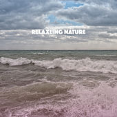Relaxeing Nature by Various Artists