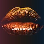 After Party Mix by Various Artists