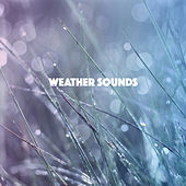 Weather Sounds by Various Artists