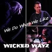 We Do What We Like by Wicked wayz
