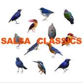 Salsa Classics de Various Artists