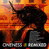 Oneness - Remixed von Various Artists