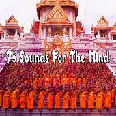 75 Sounds For The Mind de Zen Meditation and Natural White Noise and New Age Deep Massage