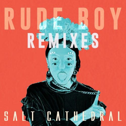 Rude Boy (Remixes) von Salt Cathedral